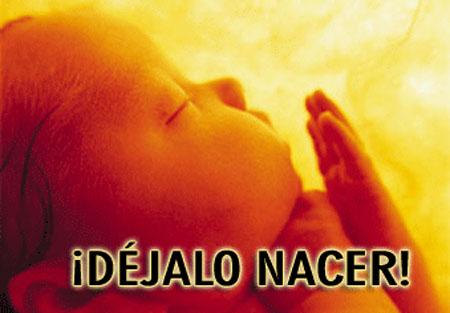 Sobre la verdadera ilegitimidad de la Ley del Aborto